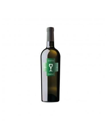 Candòra - Bianco IGT Salento - Schola Sarmenti | Vino Salentino